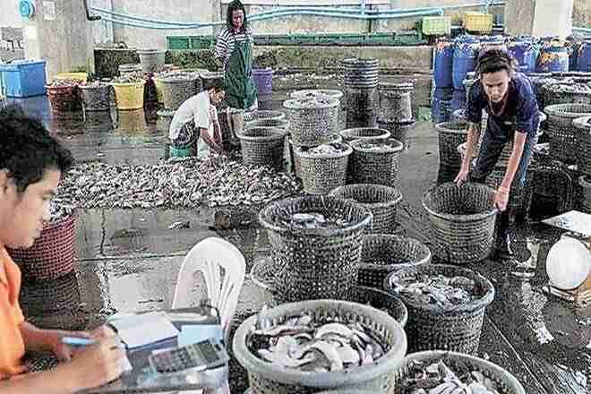 CCEA清除渔业Sectorinfrastrastrastrastructure的7,522亿卢比
