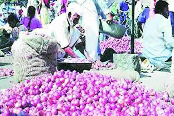 Maharashtra农民眼睛喀拉拉邦,泰米尔纳德邦到供应