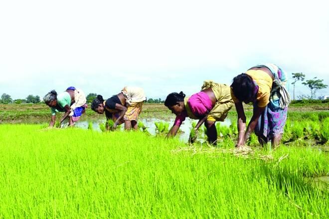 Maharashtra首先在6个州任命贸易代表,促进国家间行业