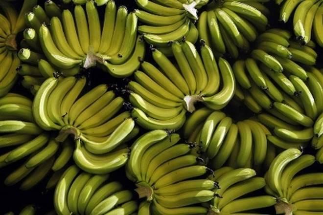 印度是世界上最大的芒果生产商,香蕉;检查其他商品是否使其成为Thelist