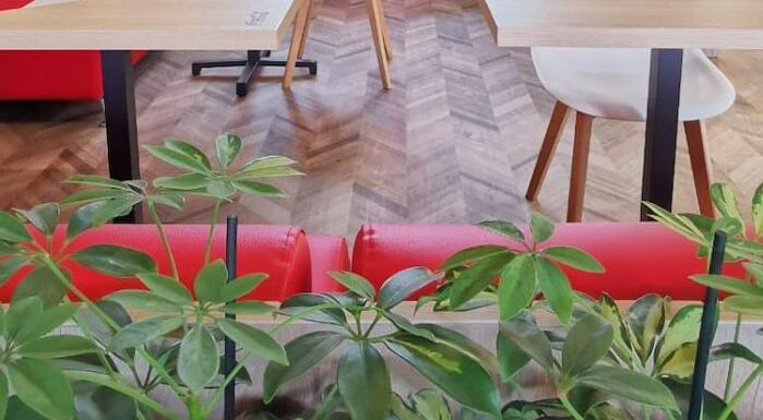 法国零售商欧尚在布加勒斯特开设100万欧元的餐厅