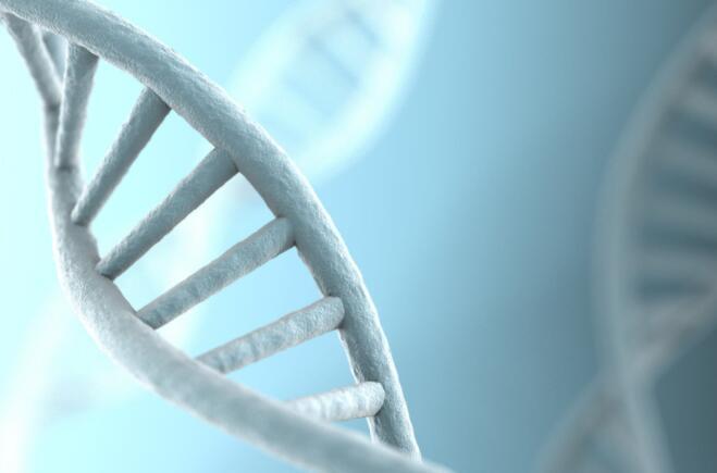 投资者对这家生物技术领先的癌症治疗候选药物的早期结果并不满意